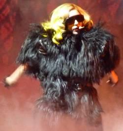 Ob das Ding um Lady Gaga auch mal ein Tier war? - Quelle: Wiki Commons / Sricsi / CC-BY-2.0