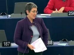 Ulrike Lunacek verteidigte im Europaparlament ihren Bericht