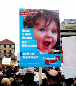 Bei den drei homophoben Demos gegen den Bildungsplan in Stuttgart trat neben der Partei Bibeltreuer Christen insbesondere die AfD mit Plakaten hervor