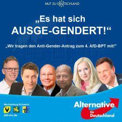 """Weniger Stimmungsmache als eine klare Kampfansage: Der """"Anti-Gender""""-Aufruf der AfD Mecklenburg-Schwerin"""