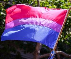 Der Aktivist Michael Page entwarf 1998 eine Flagge der Bisexuellen: Blau steht f�r Heterosexualit�t. Pink f�r Homosexualit�t und Lila � als Ergebnis der Mischung von Blau und Pink � f�r Bisexualit�t - Quelle: Wiki Commons / Fibonacci / CC-BY-SA-3.0