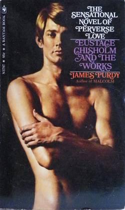 """Vielsagender Schutzumschlag einer englischsprachigen Ausgabe: """"The Sensational Novel of Perverse Love"""""""