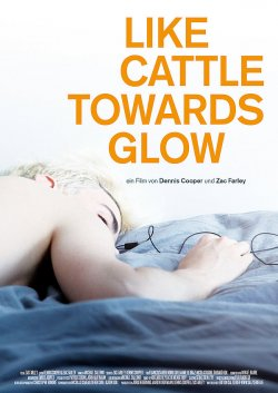"""Die Edition Salzgeber hat """"Like Cattle Towards Glow"""" mit deutschen Untertiteln auf DVD ver�ffentlicht"""