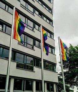 Mussten wieder eingeholt werden: Regenbogenfahnen vor dem Staatsministerium f�r Soziales und Verbraucherschutz - Quelle: CSD Dresden e.V.