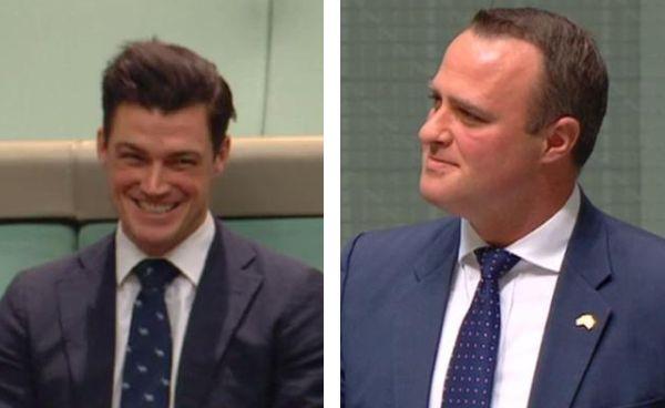 Abgeordneter nutzt Parlamentsdebatte für Heiratsantrag