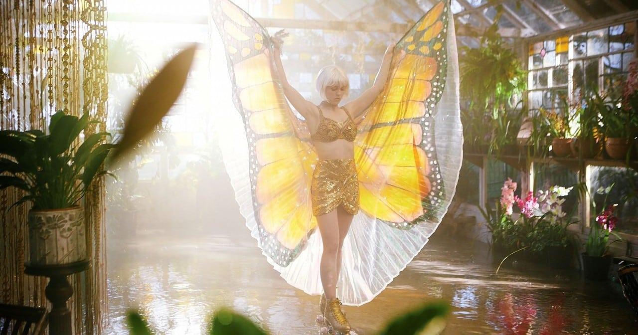 Gewinnspiel: Die Sinnlichkeit des Schmetterlings